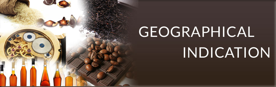 Overview about Geographical Indication ( GI ) in Viet Nam